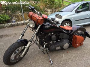 SO04 Veg Havane Harley Softail (1)